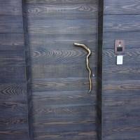 Sculpt Art Entry & Garage Doors (38)