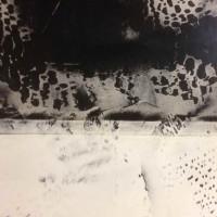 Sculpt Art _Samples (28)